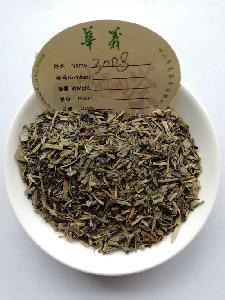 chunmee green tea 3008