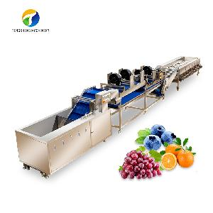 Industrial fruit and vegetable cleaning step air - drying sorter machine