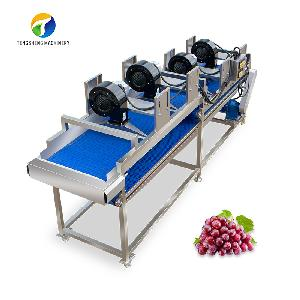 Stainless steel fruit and vegetable air dryer machine (TS-JX35)
