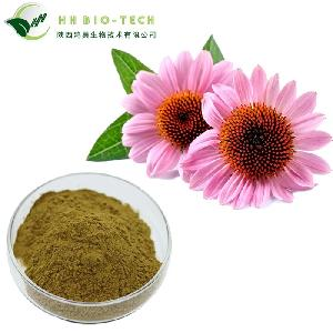 Hot sale Echinacea Extract with 4%-6%polyphenol