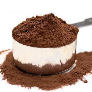 Hot Selling cocoa cream Powder