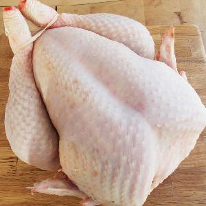 chicken body for sale
