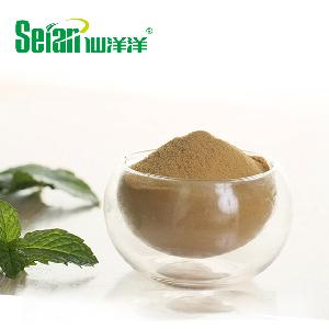 Instant Mint Extract Powder