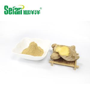Instant Ginger Extract Powder