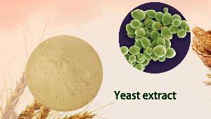 Yeast Extract HP00M