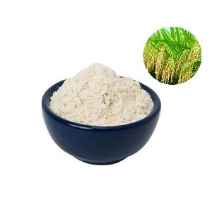 Delicious Rice protein factory direct supply