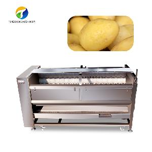 Sale of large potato wool roller cleaning and peeling machine TS-M800