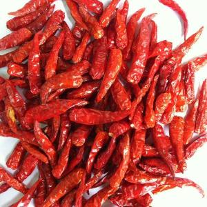 Good quality Dried Red Chilli from Asia