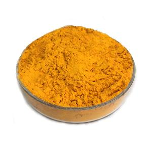 Tumeric extract  powder   Curcumin