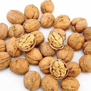 Walnut Kernel, Walnut Halves, Walnut Shelled and inshell