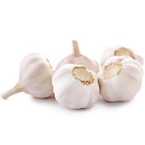 white garlic/ Fresh garlic
