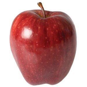 Fresh Apple Fruit / Quality Fresh Apple / Red Apple Fruit