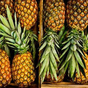 Pineapple/Fresh Pineapples/Fresh Fruits!