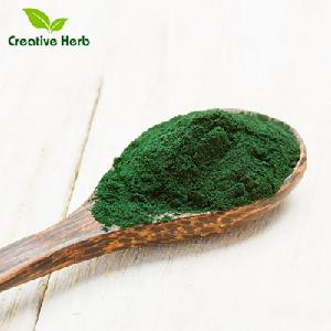 Mulberry leaf extract water soluble Sodium copper chlorophyllin powder/ Oil-soluble chlorophyll