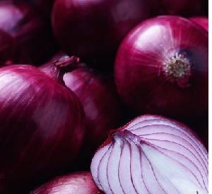 Onion Fresh Peeled Onions for Asian, Middle East, Japan and Korea markets