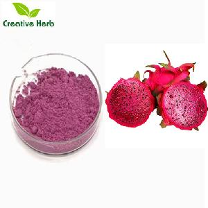 Free sample large stock Freeze dried red dragon fruit powder / 100% CWS red dragon fruit powder