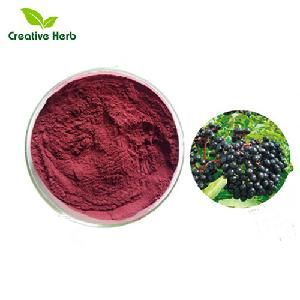 Anti-flu and Colds treatment effects with Elderberry Extract. Freeze-dried Elderberry Fruit Powder