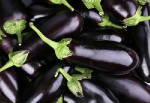 Eggplants FRESH VEGETABLE