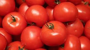 TOMATOES FRESH TOMATOES