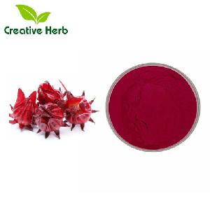 Hot selling fruit powders with Roselle powder,Roselle (Hibiscus sabdariffa ) Extract