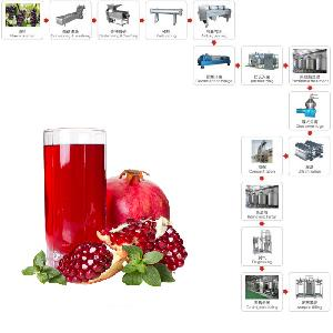 Pomegranate Fruit Juice Processing Line With CE Approved