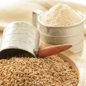 Best Ukraine Wheat grain/soft milling Wheat for sale, Wheat Flour and Wheat Germ For sale, Durum and