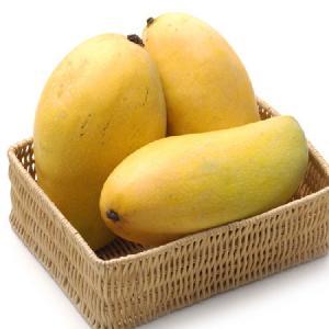 High quality 100% natural fresh fruits class A Australian fresh mango