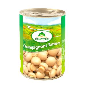 mushroom   Canned   whole  in China with factory price