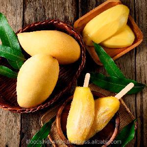 Mango ChokAnan (Mangifera indica)