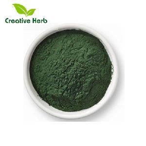 Pure Natural 100% water soluble Sodium Copper Chchlorophyllin salt