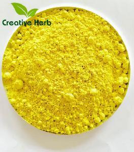 Natural sophora Japonica Extract Quercetin 98% CAS NO.117-39-5