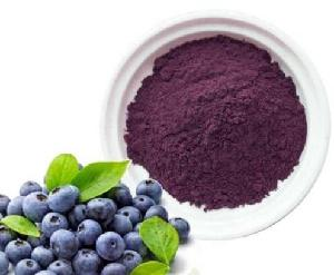Natural Blueberry Extract/Fruit Powder/Bilberry Extract 25%Anthocyanidins