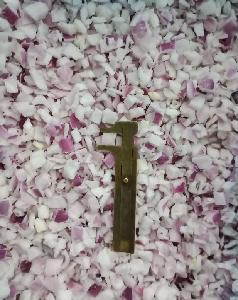 IQF Frozen Diced Red Onions
