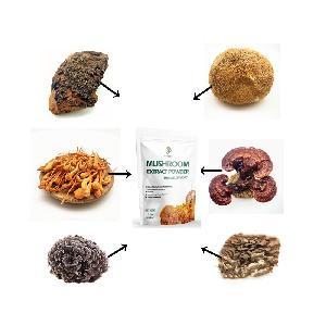 7 in 1 Mushroom Extract Superfood Blend Powder-Lions Mane, Reishi, Cordyceps, Chaga, Turkey Tail, Ma