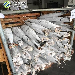 Frozen Fish HGT Wahoo (Acanthocybium Solandri)