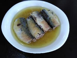 Canned sardine fish in brine