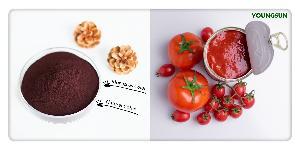 MONASCUS COLOR Monascus Red Color Food Coloring Tomato Paste Color TOMATO SAUCE COLOR