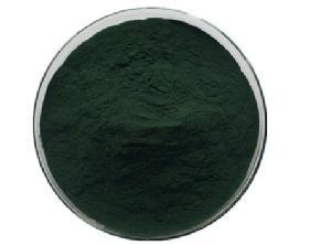 Undersun wholesale food grade bulk organic Chlorella Vulgaris chlorella extract powder