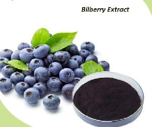 Bilberry Extract With Anthocyanins organic Bilberry juice  powder  for  Health